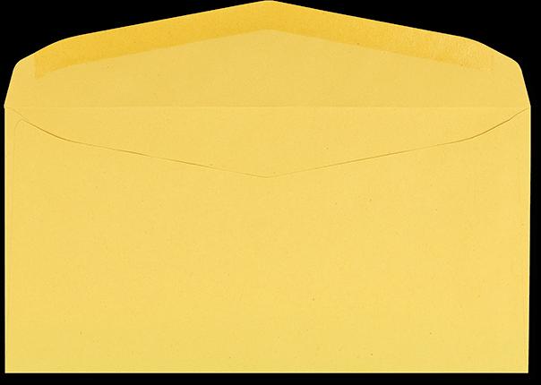 Zustellungsumschlag 120x235 mm Rückseite offen