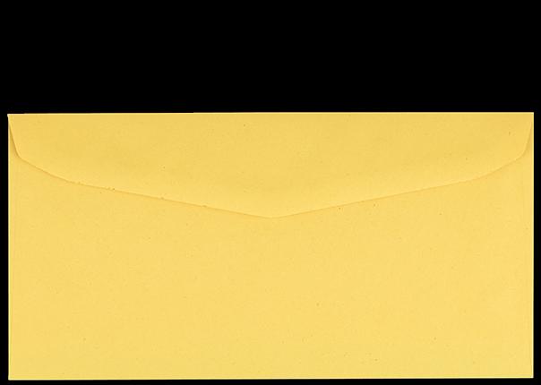 Postzustellungsumschlag 120x235 mm Rückseite geschlossen