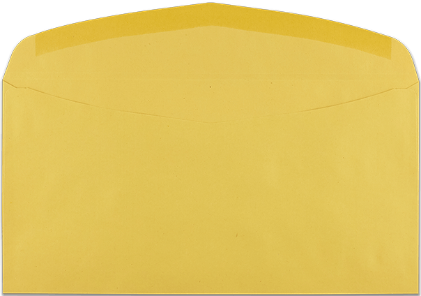 """Zustellungsumschlag 120x235 ohne Zusatzdruck """"Deutsche Post"""" Rückseite offen"""