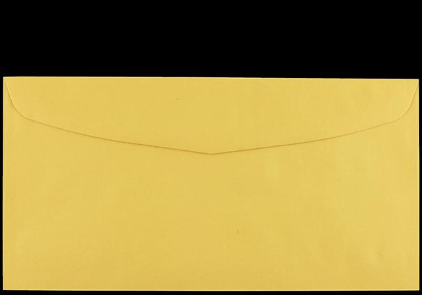 """Postzustellungsumschlag 120x235 mm ohne Zusatzdruck """"Deutsche Post"""" Rückseite geschlossen"""