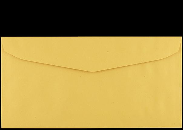 Postzustellungsumschlag mit Fenster 120x235 mm Rückseite geschlossen