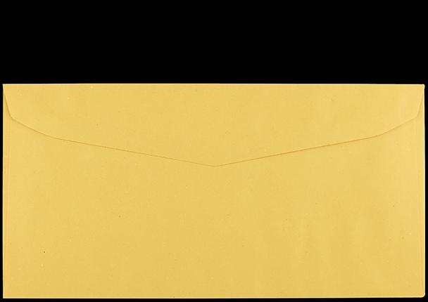 Postzustellungsumschlag 120x235 mm mit Fenster Rückseite geschlossen